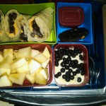 Bean Burrito, Lemon Soy Yogurt with Blueberries and More