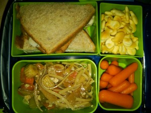 Turkey Sandwich Triangles, Organic Carrots and More