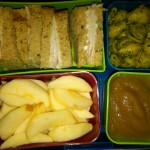 Turkey Sandwich, Apple Slices and More