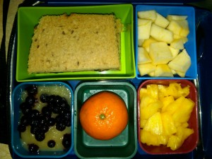 Diced Pineapple, Applesauce with Blueberries and More