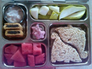 Dino Sandwiches, Watermelon and More