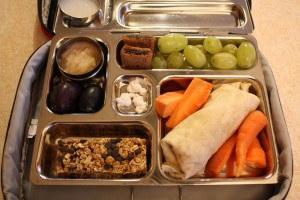 Turkey Wrap, Grapes and More