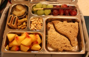 Dino PB&J, Nectarine, Grapes and More