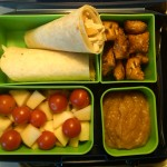 Chicken and Tomato Wrap, Applesauce & More
