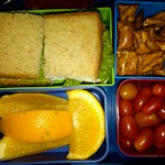 Turkey Sandwich with Lettuce, Orange Slices and More