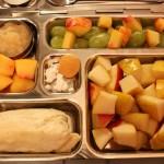 Baby Burrito, Nectarine Bites and More